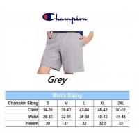 6中: Champion 全棉短褲 Grey 淺灰色