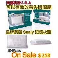 5中: Sealy 記憶枕頭 (綠色)