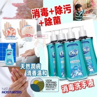 4中: Dial 277ml 洗手液