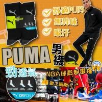 2底: Puma Training 男裝長襪 (8對裝)