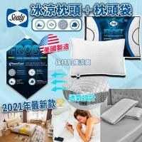 6底: Sealy Cool-to-the-Touch 冰涼觸感枕頭