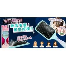 12月初: Wet Brush 加大方頭版美髮專用梳
